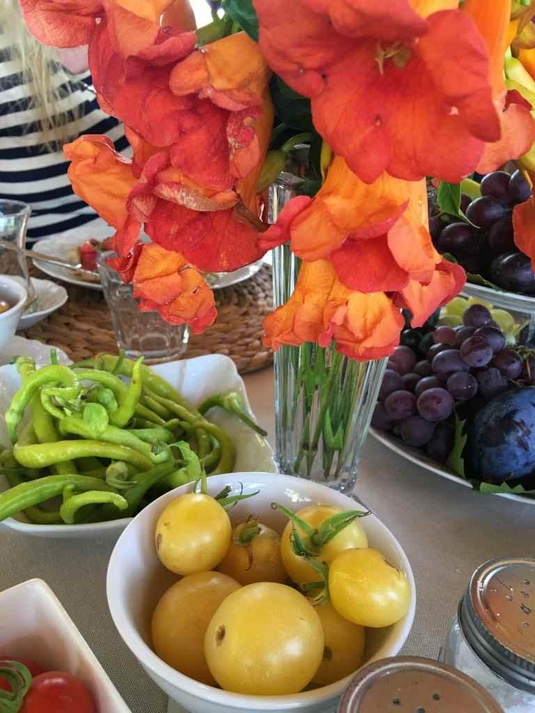 bozcaada-talay-baglari-konukevi-uzum-sarap-otel-domates
