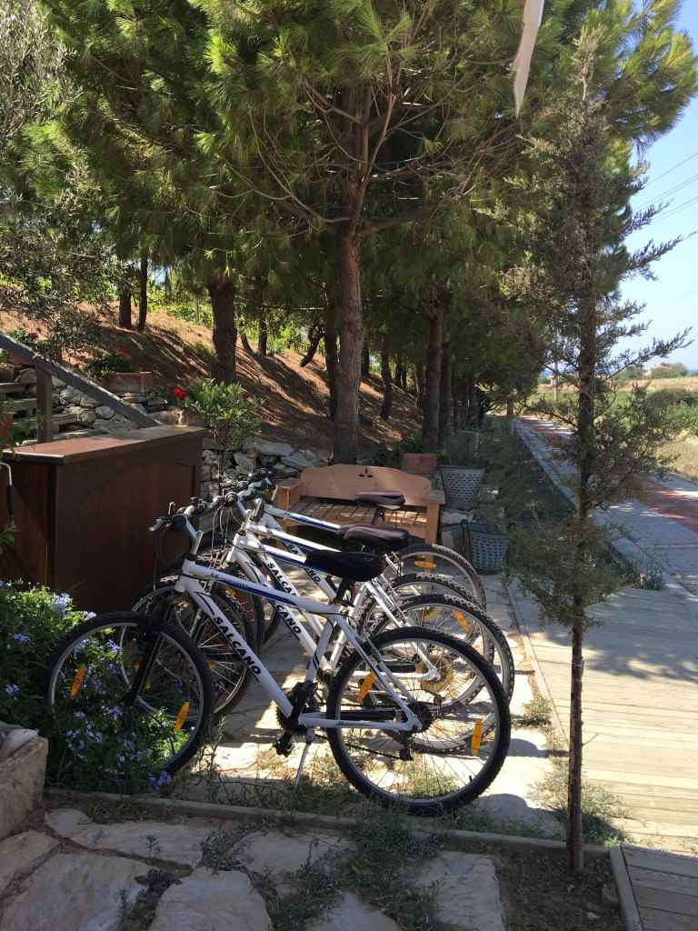 bozcaada-talay-baglari-konukevi-uzum-sarap-otel-bisiklet