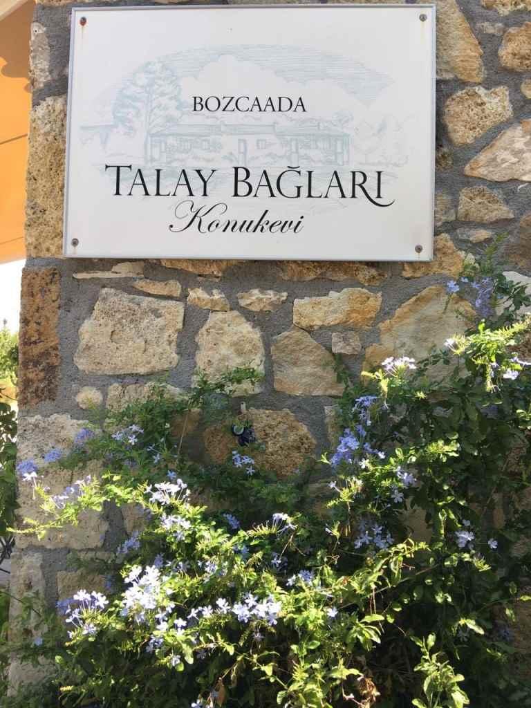 bozcaada-talay-baglari-konukevi-uzum-sarap-otel-kitap-bahce